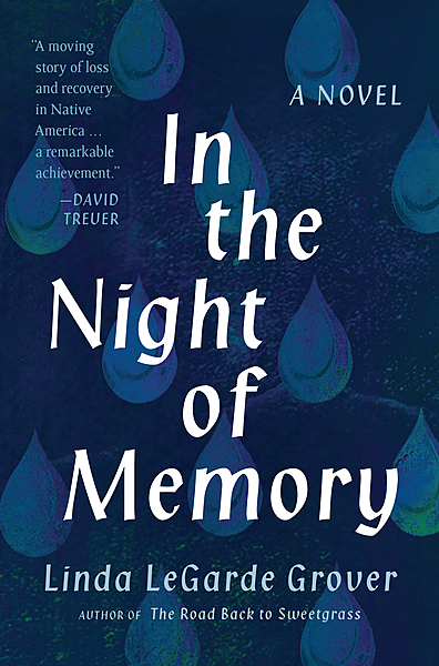 Cover Image for In the Night of Memory