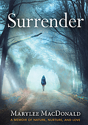 Cover Image for Surrender