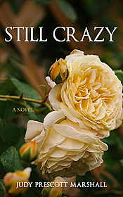 Cover Image for Still Crazy