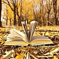naturegracereader Avatar