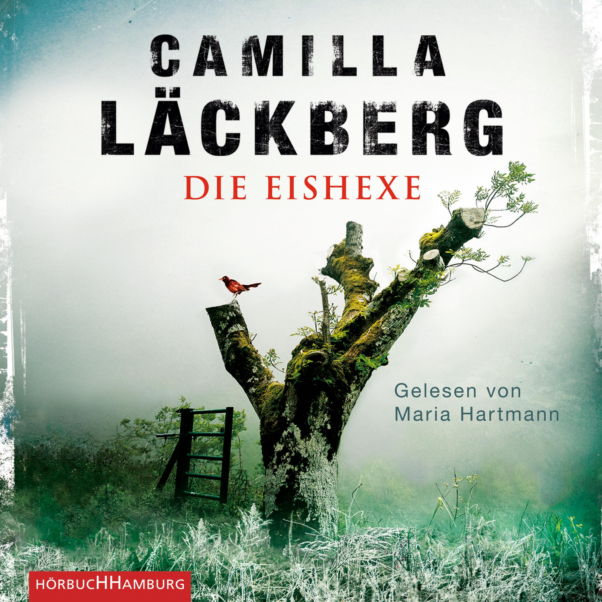Cover für das Die Eishexe Hörbuch