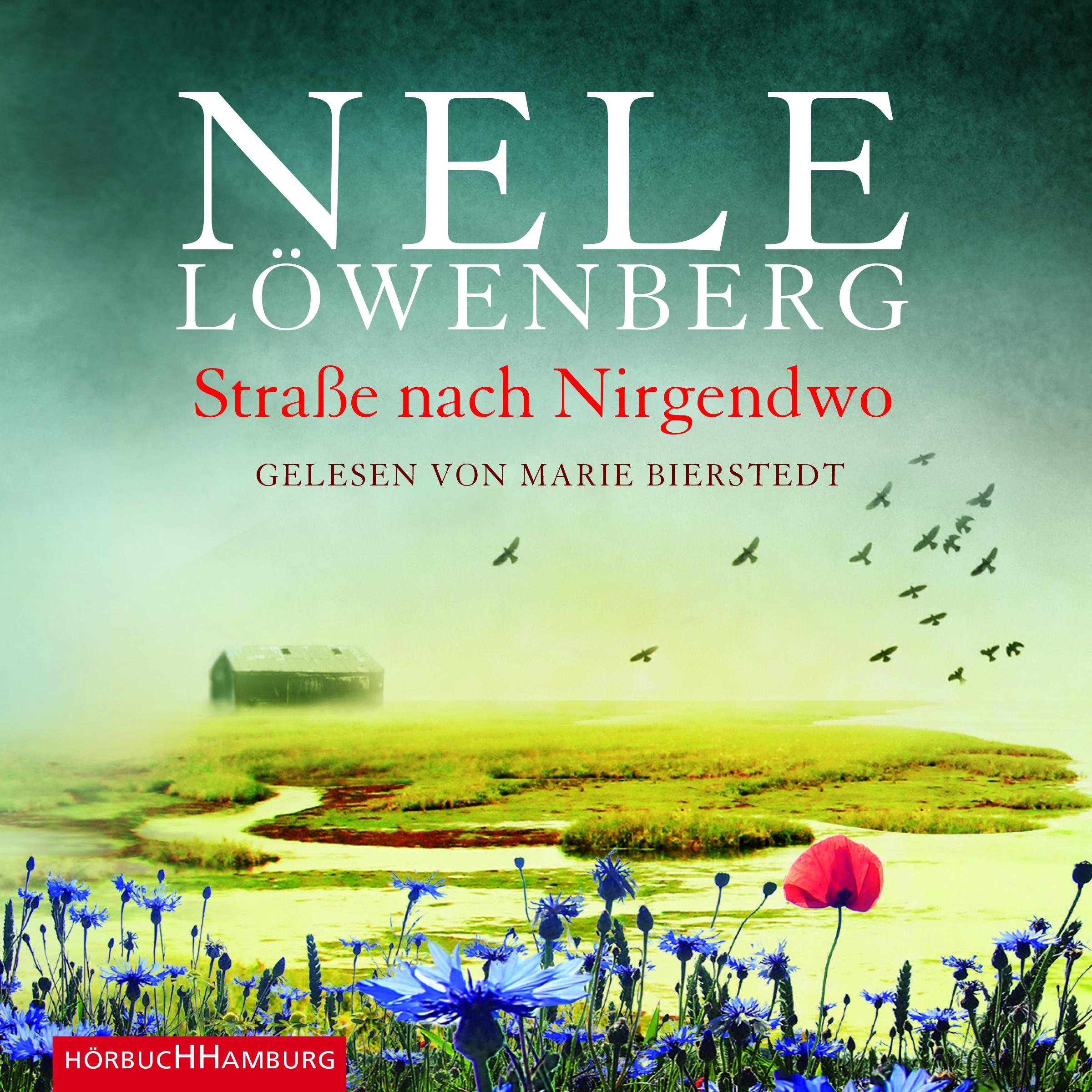 Cover für das Straße nach Nirgendwo Hörbuch