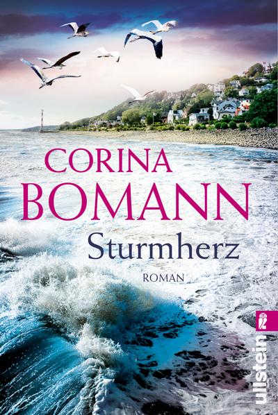 Cover für Sturmherz