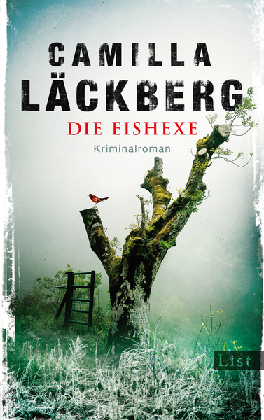 Cover für Die Eishexe