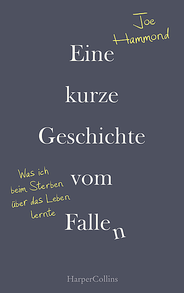 Cover für Eine kurze Geschichte vom Fallen - Was ich beim Sterben über das Leben lernte
