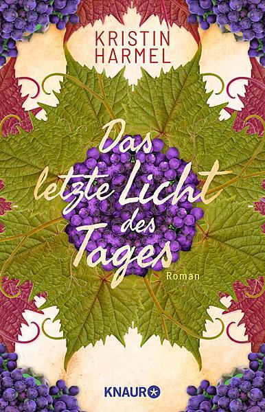 Cover für Das letzte Licht des Tages