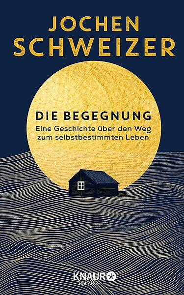 Cover für Die Begegnung
