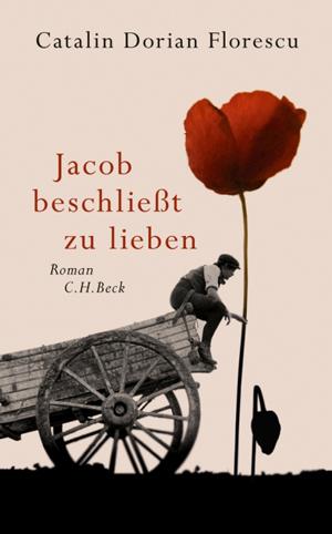 Cover für Jacob beschließt zu lieben
