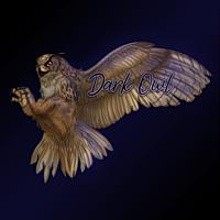 dark owl Avatar